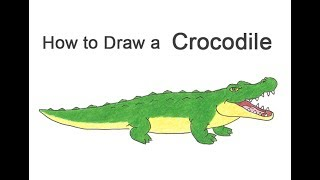 How to Draw a Crocodile / Alligator (Cartoon)