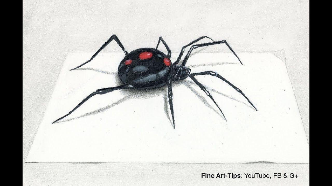 How To Draw A Black Widow Spider In 3d Narrated