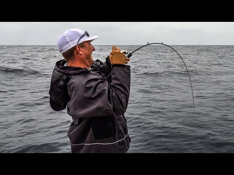 AMAZING DEEP SEA FISHING!!! {Catch Clean Cook} Massive Tilefish And Mahi (Virginia Beach)