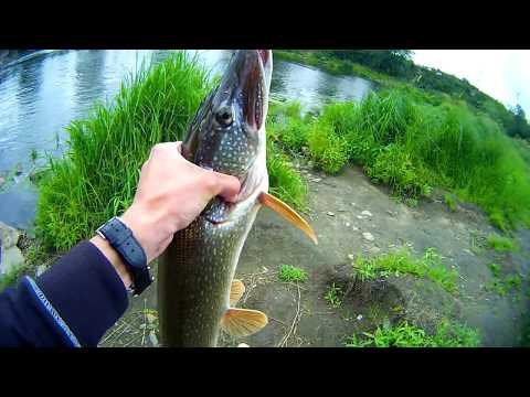 ловля щуки на реке уфа