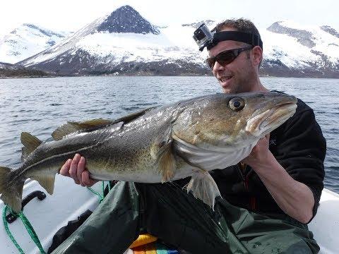 Vissen in Mørsvikbotn - Noorwegen - Deel 1