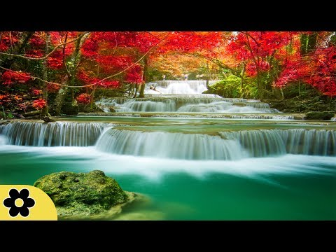 Healing Meditation Music, Soothing Music, Relaxing Music Meditation, Binaural Beats, �C
