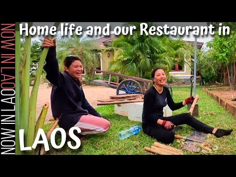 Home life and Our Restaurant in Vientiane Laos During Lock Down | Now in Lao
