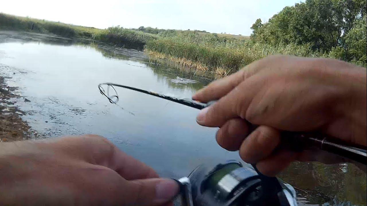 ловля поппером в августе термогольфы Отдельно для