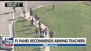 'When Seconds Count, Minutes Don't Matter': FL Sheriff Supports Arming Teachers in Schools