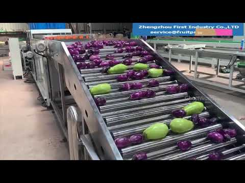 World amazing automatic food processing machines | Industrial food processing machines