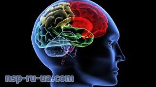 Применение препаратов NSP для реабилитация, восстановление больного после инсульта(Продукция NSP для головного мозга - http://nsp-ru-ua.com/nature-sunshine-nsp-herbal/brain-nervous/ Применение препаратов NSP для реабилита..., 2014-10-29T01:59:13.000Z)
