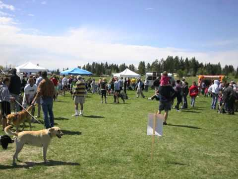 Competitive Timing | 2012 Whitefish Animal Hospital WAG Race | Chip Timing