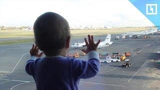Трагедия в небе над Синаем. 2 года спустя