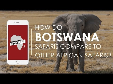 How do Botswana safaris compare to other African safaris? Rhino Africa's Travel Tips