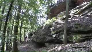 Aufstieg zur Wegelnburg - Burgen Wanderung Pfälzer Wald #2