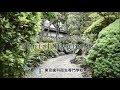 TDH東京歯科衛生専門学校 学校紹介 の動画、YouTube動画。