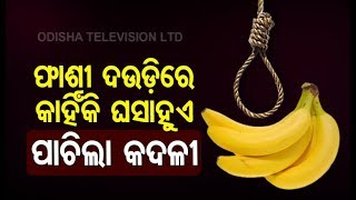 How Convicts Should Be Hanged  Experts View