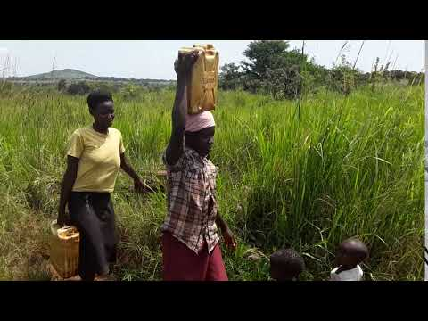 fetching water from open sources in Byebega kirisa Village