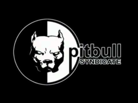 Cyro Interactive/Pitbull Syndicate (2000)