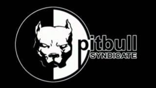 видео Pitbull Syndicate