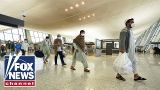 Afghan refugee relocation starting 'war on citizenship': Hanson