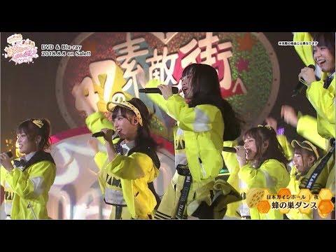 AKB48 チーム8 ライブコレクション 〜またまたまとめ出しにもほどがあるっ!〜   DVD&Blu-ray ダイジェスト公開!! / AKB48[公式]