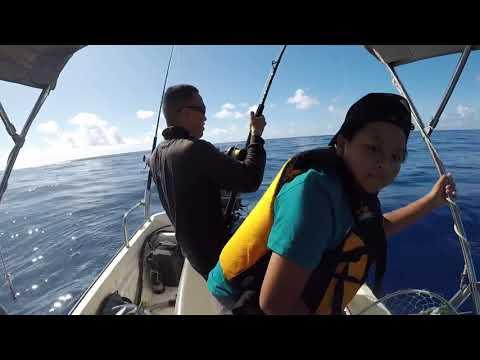 Oahu Fishing On My 13ft Boston Whaler