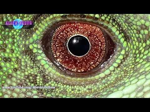 Por esto vienen los Extraterrestres... | Alien Truth