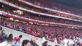 NO NAME BOYS --- TU ÉS O MEU AMOR BENFICA !!