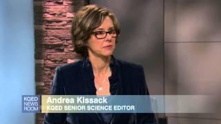Gambar cover KQED Newsroom Segment: Apple Watch Tracks Fitness ... & What Else?