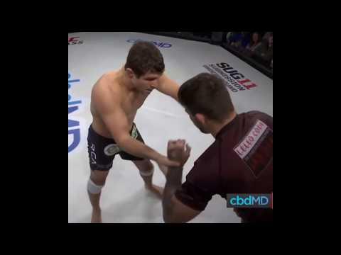 Al Iaquinta Vs Mike Perry SUG 11 UFC Fightpass