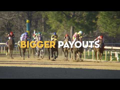 Oaklawn Today Replay Show Feb. 16 2017