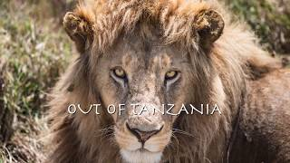 Out of Tanzania - John Barry Soundtrack