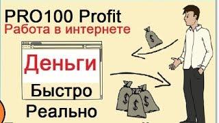 Краткая презентация Pro100Profit от Vallt Group