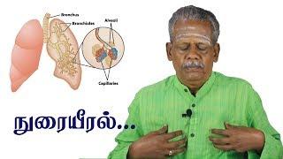நுரையீரல் பற்றி முழுவதுமாக அறிந்து கொள்ளுங்கள்! Human Respiratory System & Lungs