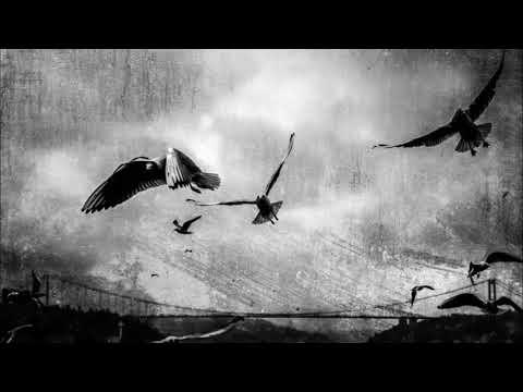Daniel Ray - Bosphorus (Original Mix)