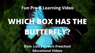 Fun Pre-K Learning Video | Which Box has the Butterfly?