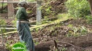 Farming of 89 year old women farmer