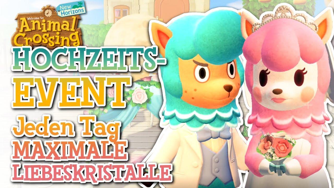Neues Hochzeitsevent Maximale Liebeskristalle Und Alle Infos Animal Crossing New Horizons Youtube