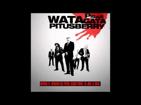 Watagatapitusberry - Pitbull ft. Lil Jon, Sensato del Patio, Black Point & El Cata (Letra)