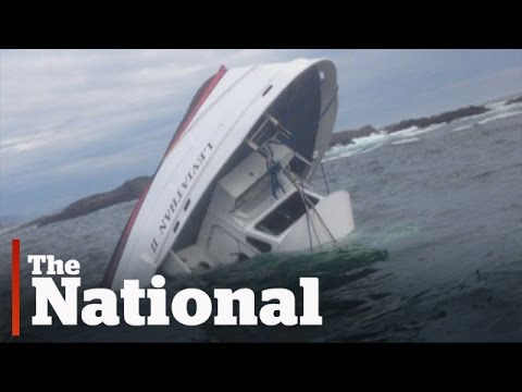 Tofino whale-watching accident kills five people