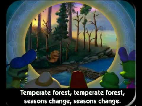 temperate-forests