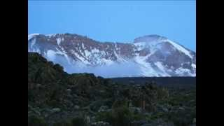 Team Kilimanjaro Guides