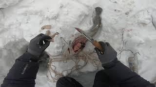 Рыбалка#Налим#Я в шоке !!!