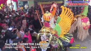 Video Jaranan LESTARI BUDOYO live KEDUNEN Barong FUSO BUDOYO download MP3, 3GP, MP4, WEBM, AVI, FLV Juli 2018