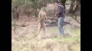 Таджикски прикол