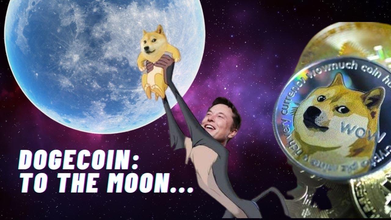 Dogecoin To The Moon Elon Musk - Elon Musk S Tweets On ...
