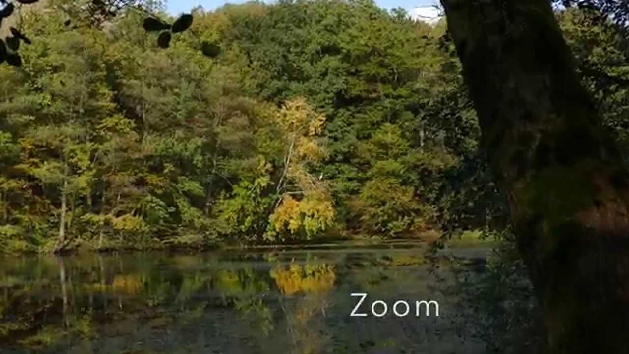 Panasonic Dmc Fz1000 Zoom And Digital Zoom Test Youtube