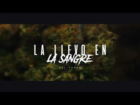 La Llevo En La Sangre - Gil Pérez | Video Underground 2019