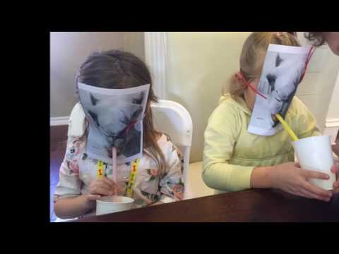 The Frisco Hebrew School End of Year Video 2016