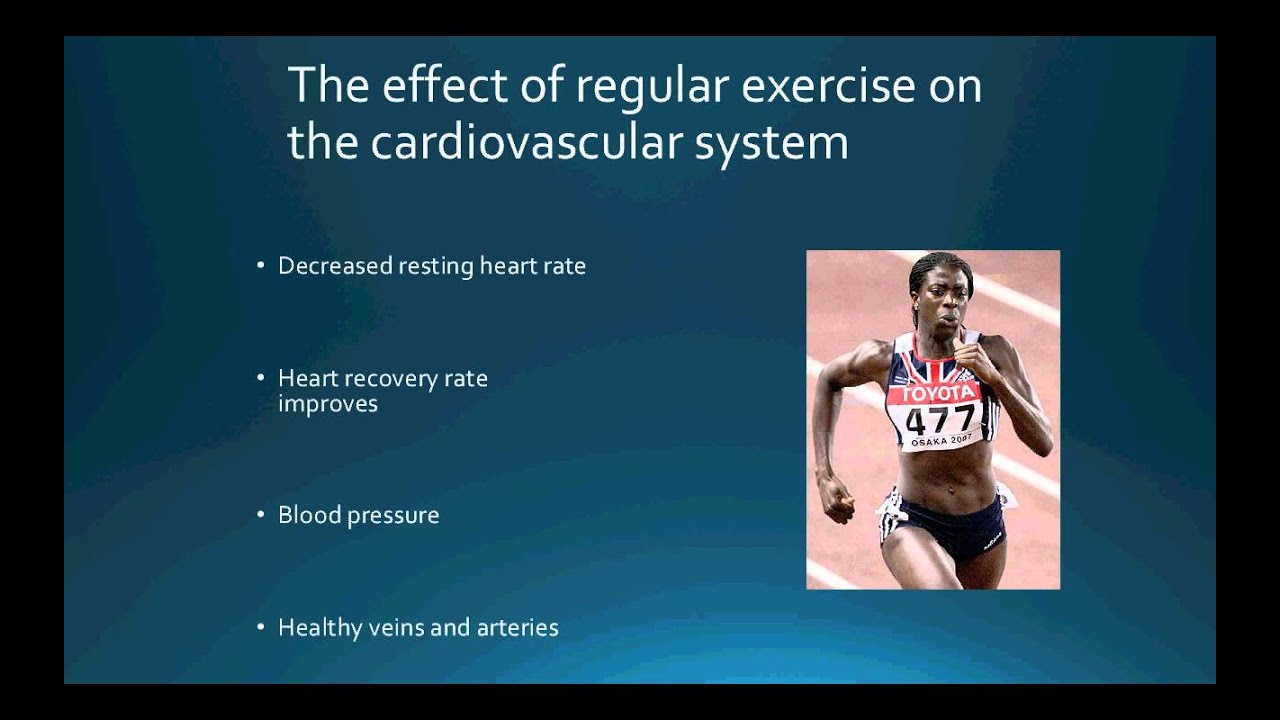 exercise and the cardiovascular system and Cardiovascular system the main function of this system is the internal transport of cells and dissolved materials, including nutrients, wastes, and gases differences between cardiovascular functioning in older and younger persons have been extensively quantified.
