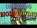 Unboxing Lovebird Biola Euwing Pale Fallow Hope Hobbies  Mp3 - Mp4 Download