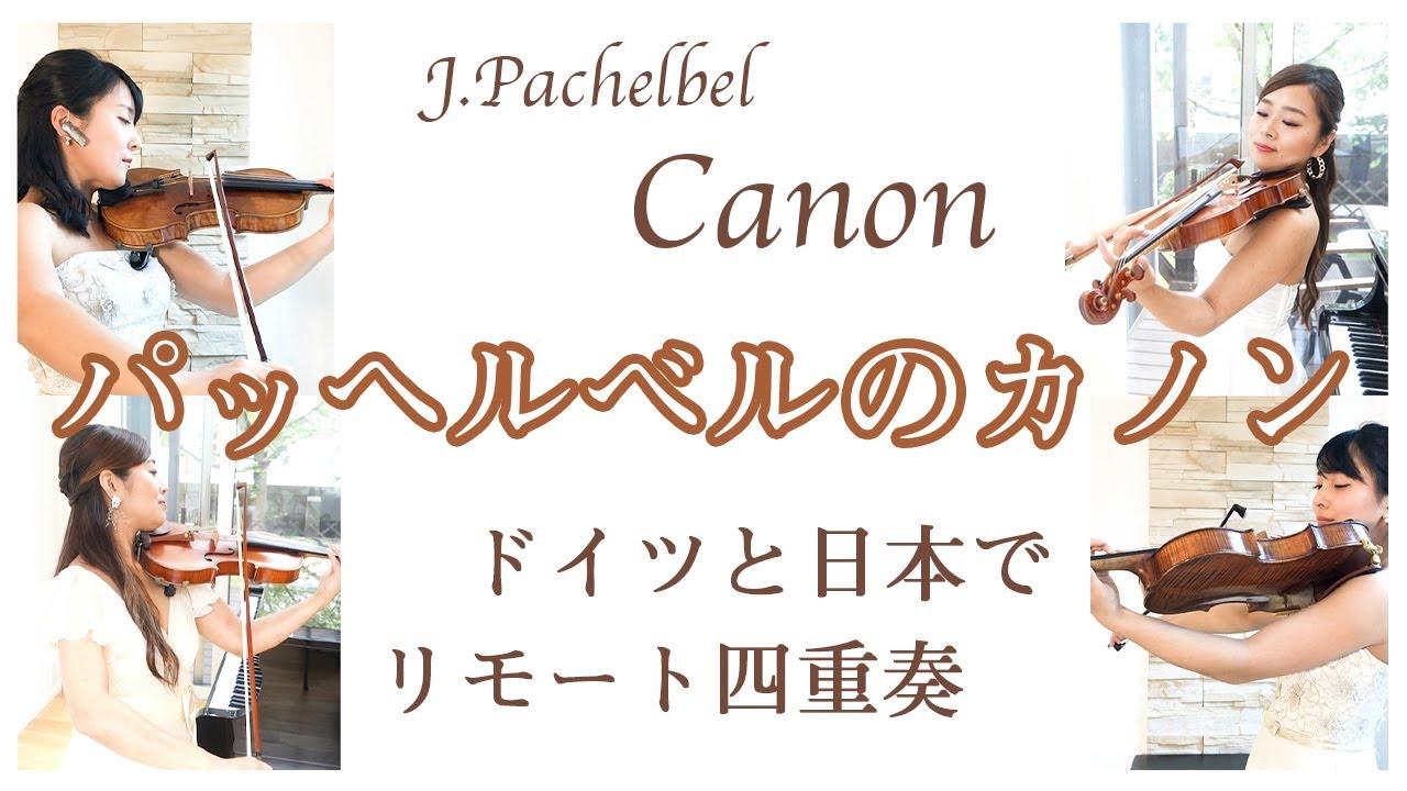 【Classic】パッヘルベルのカノンをドイツと日本でリモート四重奏| Canon in D by Johann Pachelbel–String Quartet