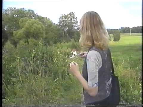 Новопеределкино и окрестности. Прогулка, 1997 год